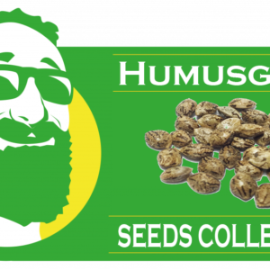 LogoSeedsCollection